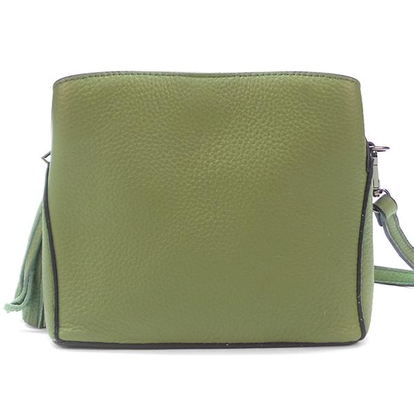 Женская сумка Borgo Antico. Кожа. 8129 green